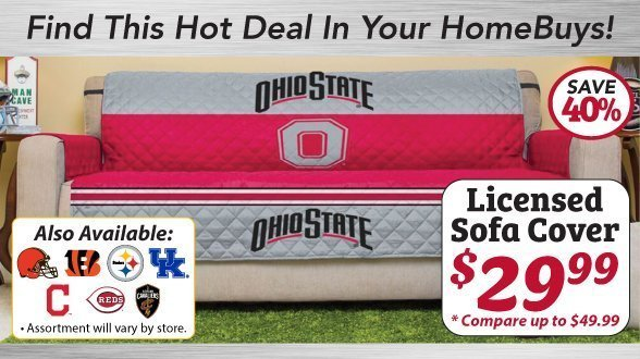 Licensed Ohio Stage Team Sofa Cover